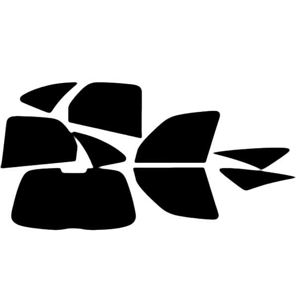 Citroen Xsara Picasso  Evowrap - Window Film & Vinyl Wrap