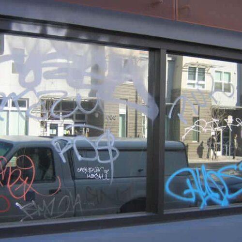 Speciality Window Film Installation Evowrap